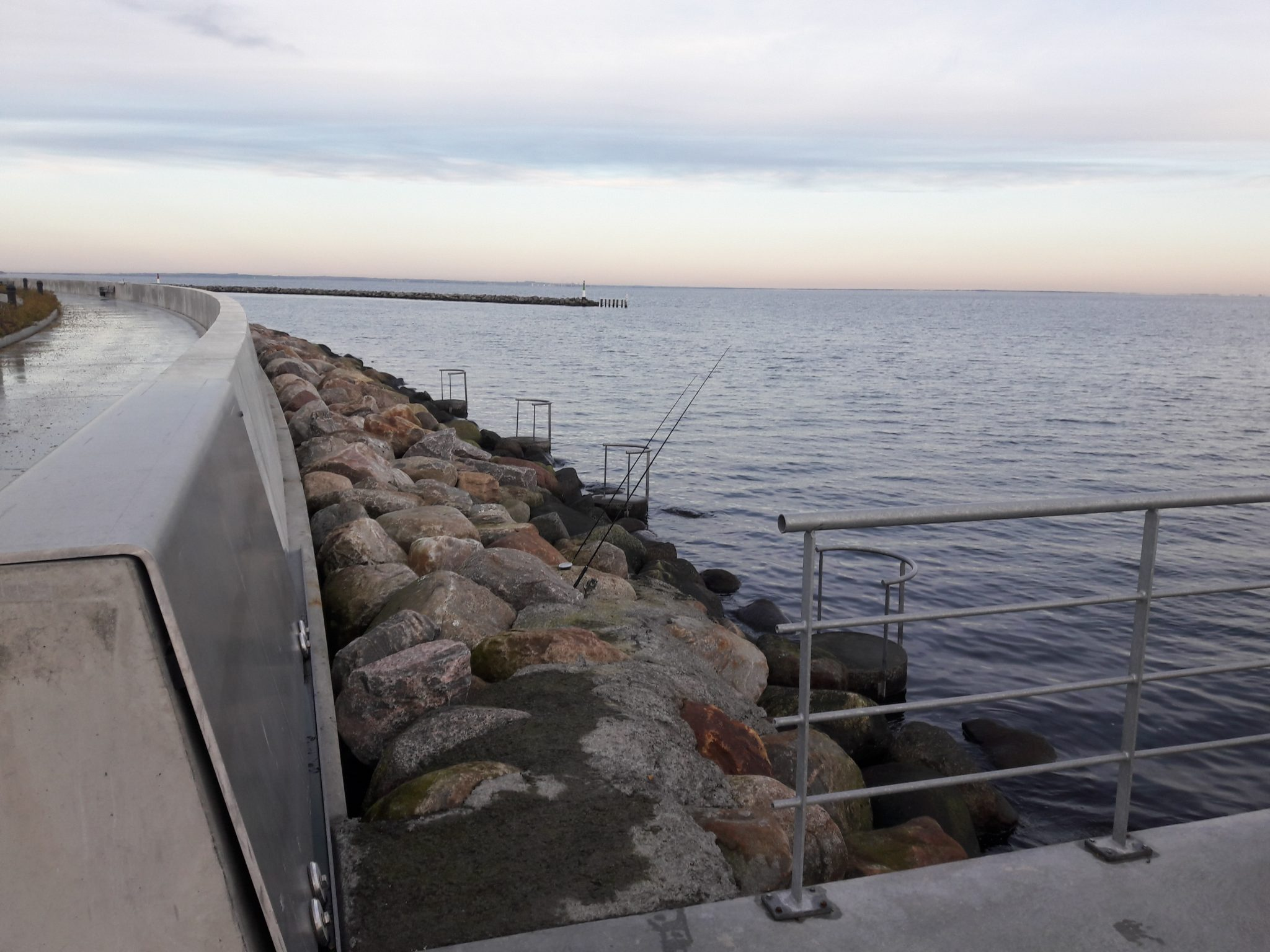 Skovshoved Havn fiskeri